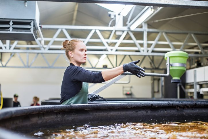 Aquaculture industry and the need for funding